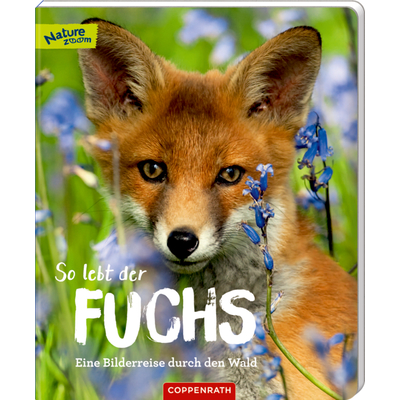 So lebt der Fuchs (Nature Zoom)