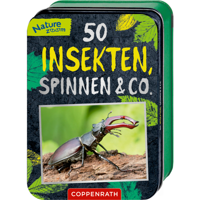 50 Insekten, Spinnen & Co. (Nature Zoom)